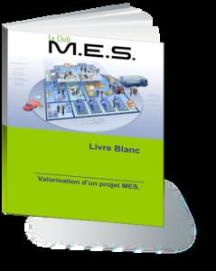 Livre blanc - ROI logiciel MES - ROI projet MES